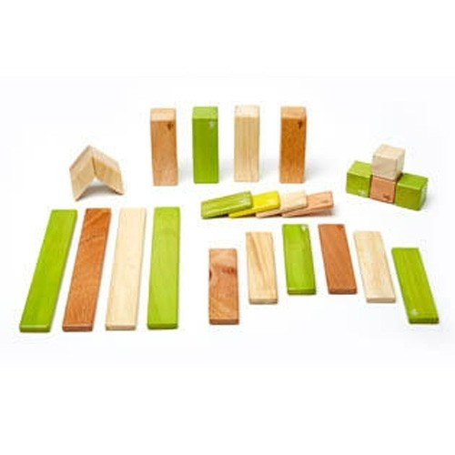 24-Piece Set Tegu (Jungle)