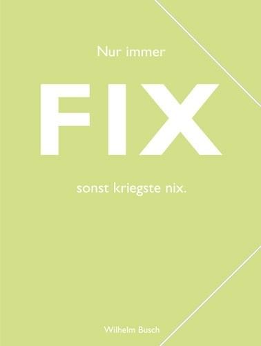 """CEDON Sammelmappe, pastell hellgrün, Busch """"Fix"""""""